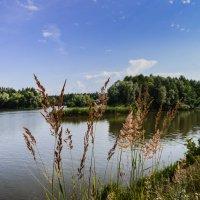 На реке :: ирина лузгина