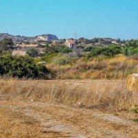 Кипр :: Dmitry i Mary S