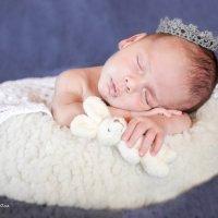 новорожденный малыш :: Оля Терентьева