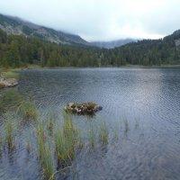 Одно из Каракольских озер, Алтай :: Алина Меркурьева