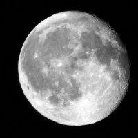 Луна в августе :: Natali