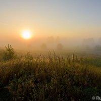Рассвет с туманом :: Сергей
