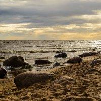 Финский залив :: Олег Каразанов