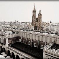 Вольный город Краков :: Galina Belugina