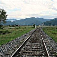 Кругобайкальская железная дорога :: Leonid Rutov