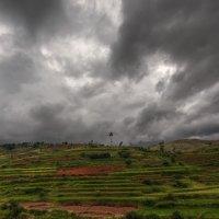 Перед грозой...Мадагаскар! :: Александр Вивчарик