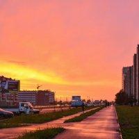 Розовый вечер :: юрий Амосов