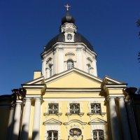 Вороновская церковь арх Бланк :: елена