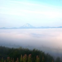 Туман :: IURII