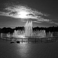 Против света :: Николай Смольников