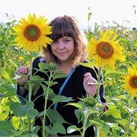 подсолнухи и красота :: оксана Кудряшова