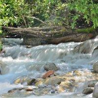 Движение и медитация...Вода и камни :: Мария Климова