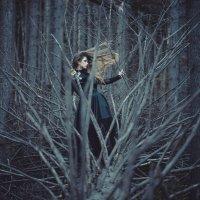 Ветер в мыслях :: Алёна Николаева