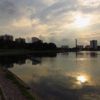 Летний вечер на городском пруду :: Андрей Лукьянов