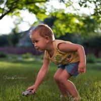 Игры на траве :: Ольга Губанова Столбцы