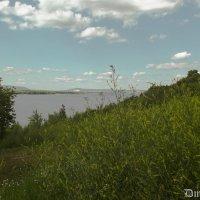 Травянистый склон :: Дмитрий Шумаков