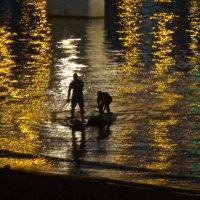 SUP-сёрфинг в отражении вечерних огней :: Елена