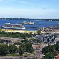 Вид на Таллин со смотровой площадки церкви Олевисте :: Елена Павлова (Смолова)