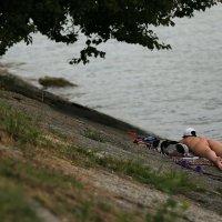Я лежу на пляжу... :: Анатолий Шулков