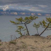Ольхонский пейзаж #1 :: Алексей Поляков
