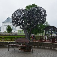 Железное дерево. :: Paparazzi