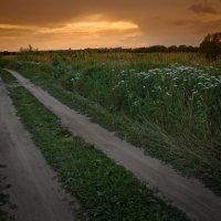 На вечерней дороге. :: Laborant Григоров