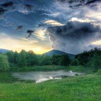 Летний вечер :: Олеся Енина