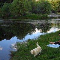 История одного знакомства 1 :: Андрей Лукьянов