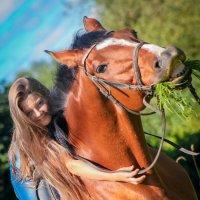 улыбка лошади :: Светлана Кузина