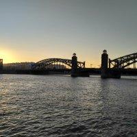 Большеохтинский Мост :: Olga *****