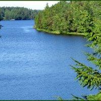 Озеро Паньярви :: Светлана