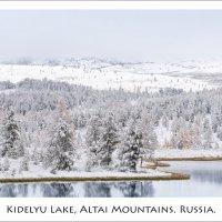 Первый снег.. :: Влад Соколовский