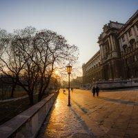 Прогулки по Вене... :: алексей афанасьев
