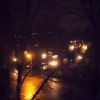 Вечерние огни :: Kris Vinnikova