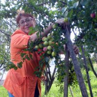 Яблочный Спас (2) :: Marina Bernackaya Бернацкая