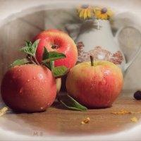 Яблоки в саду налились, глухо падают в листву, :: Людмила Богданова (Скачко)