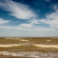 Мутные воды Таганрогского Залива :: Сергей Балкунов