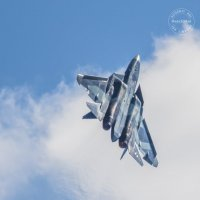 """Су-57 в небе над парком """" Патриот"""" :: Vectorkel Иванов"""