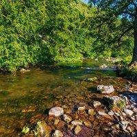 Горная река :: Любовь Потеряхина