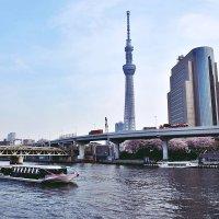 Токио телевизионная башня :: Swetlana V