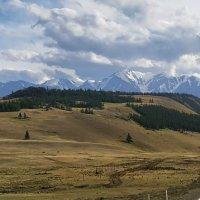 Серая лента дороги :: Виктор Четошников