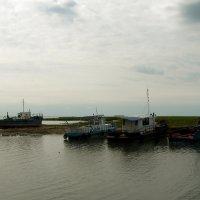 Квашнинская флотилия :: Сергей Царёв