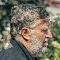 Серьёзный, бородатый. :: Анатолий. Chesnavik.
