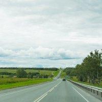 Пасмурный пейзаж Новосибирской области :: Дмитрий .