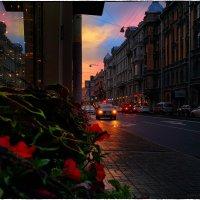 My magic Petersburg_02685 Вечер на ул. Некрасова :: Станислав Лебединский