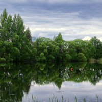Казаринка( Ельня Смоленская область) :: Елена Багирова