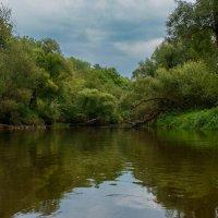 Реки Подмосковья. Река Истра. :: Николай