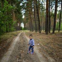 Выхожу один я на дорогу... :: Александр Бойко