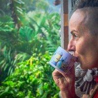 Утренний кофе на Бали :: Oleg Khudoleev
