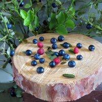 Лесные ягоды :: SaGa